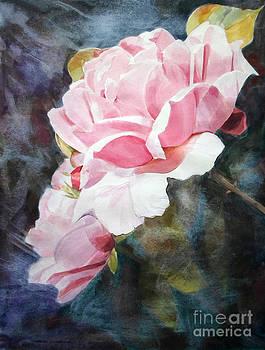 Pink Rose Caroline by Greta Corens