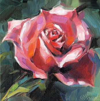 Pink Rose by Christine Karron