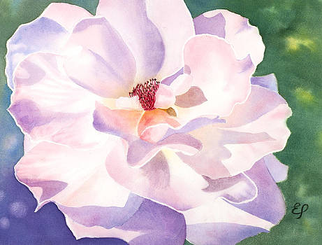 Pink Rose - transparent watercolor by Elena Polozova