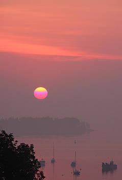Pink Sky Sunrise by Dana Moos