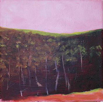Victoria Sheridan - Pink sky