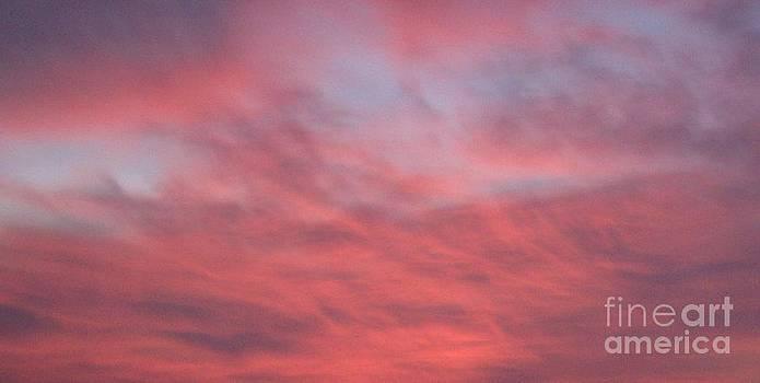 Gail Matthews - Pink Sky Wind