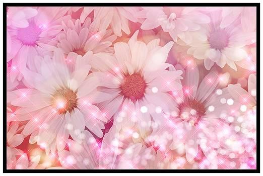 Debra  Miller - Pink Sparkles