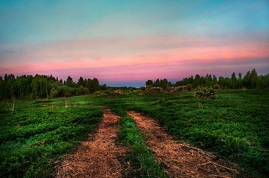 Jenny Rainbow - Pink Sunrise. Early Morning Way in Countryside