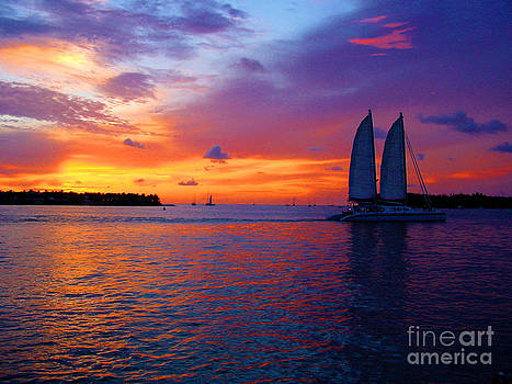 Susanne Van Hulst - Pink Sunset in Key West Florida