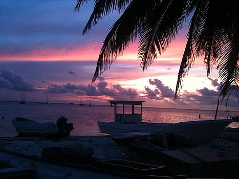 Pink sunset by Liz Rosales