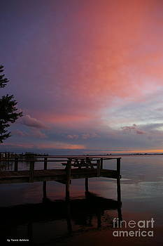 Pink sunset by Tannis  Baldwin