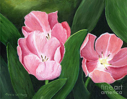 Pink Tulips by Maria Williams