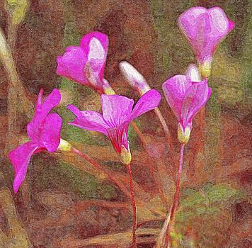 Bishopston Fine Art - Pink Wildflowers
