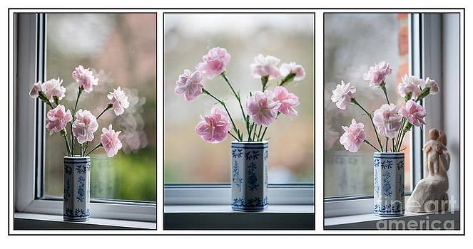 Pinks Triptych by Donald Davis