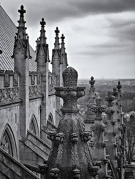 Pinnacles and Buttresses by Steve Rosenbach