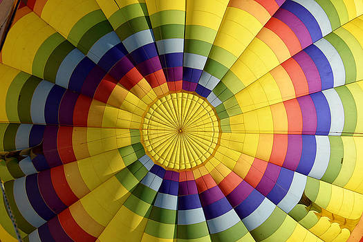 Pinwheel by Douglas DeCouto