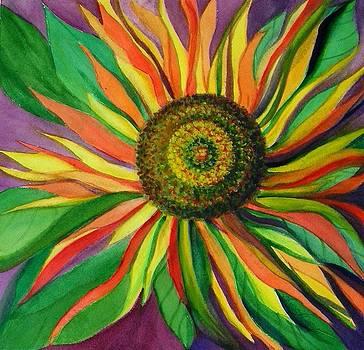Pinwheel by Laura Nance