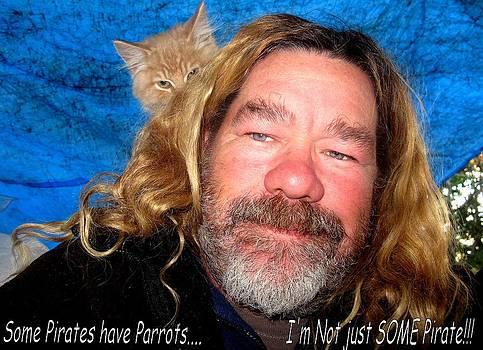 Pirate Kitty by Donnie Freeman