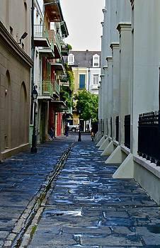 Pirate's Alley by Dana Doyle