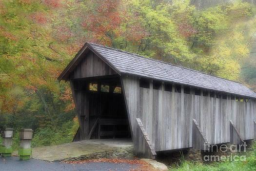 Karol Livote - Pisgah Covered Bridge