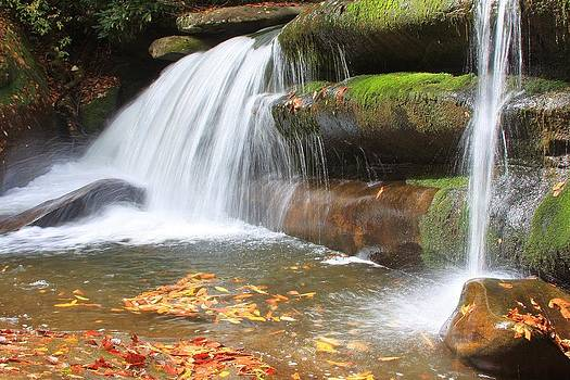 Pisgah National Forest Waterfall by Mountains to the Sea Photo