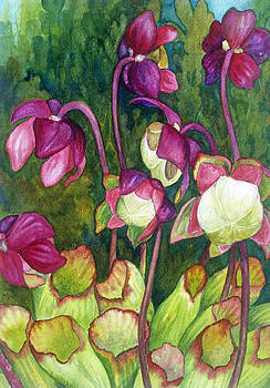 Pitcher Plant Flowers by Helen Klebesadel