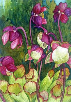 Pitcher Plant Flowers by Helen Klebesadel