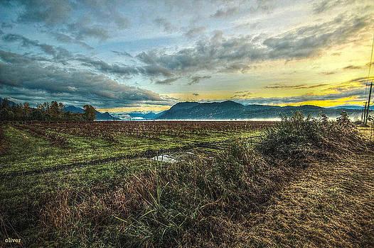 Pitt River Morn by Bill Oliver