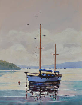 Pittwater Calm by Murray McLeod