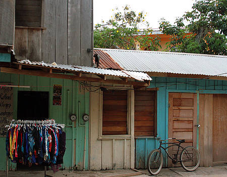 Placencia Belize by Laurie Poetschke
