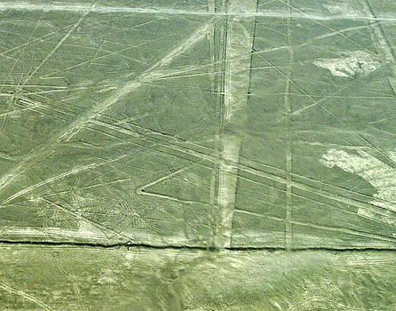 Allen Sheffield - Plains of Nazca - Spider
