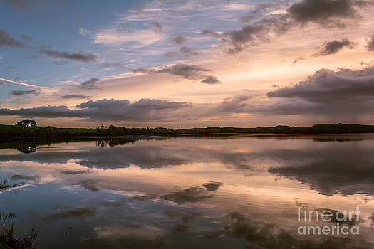 Plane Reflection over the Cleddau  by Corinne Johnston