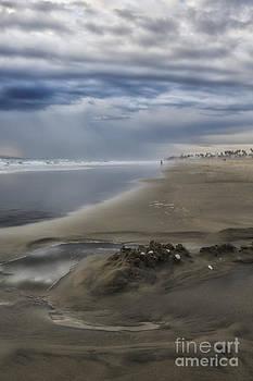 Susan Gary - Planet Huntington Beach