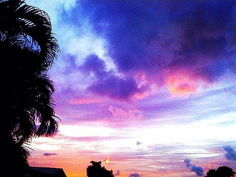 Plantation Cotton Candy Sky by Sierra Andrews