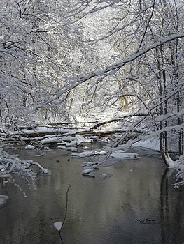 Plaster Creek by Steph Maxson