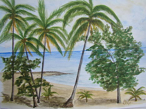 Playa Dorada by Chip Picott