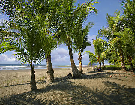 Playa Esterillos Este in Costa Rica by Tim Fitzharris