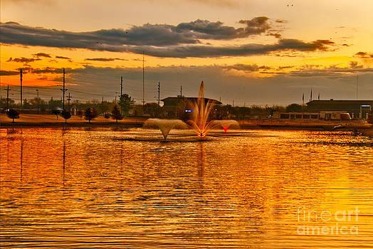 Mae Wertz - Playa Lake at Sunset
