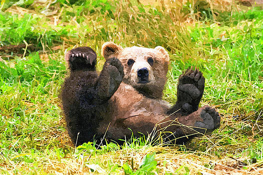 Playing Bear  by Larry Stolle
