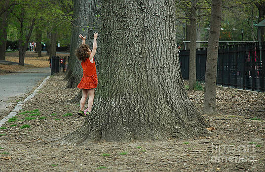 Playing with a tree. by Tina Osterhoudt