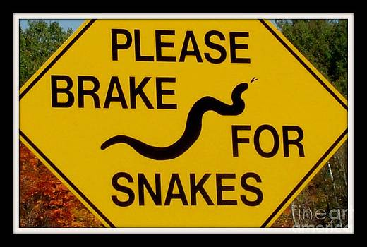 Gail Matthews - Please Brake for Snakes Sign