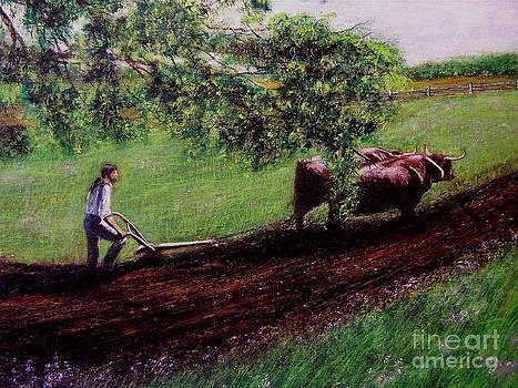 Plough Time by Sue Carmicle