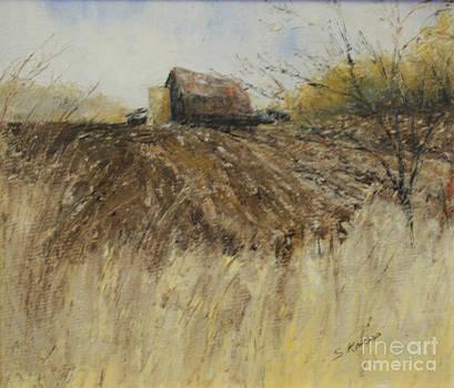 Ploughed field by Steve Knapp