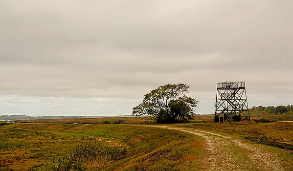 Plum Island Autumn by Nancy De Flon
