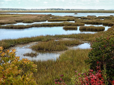 Plum Island Marshes in Autumn 2 by Nancy De Flon