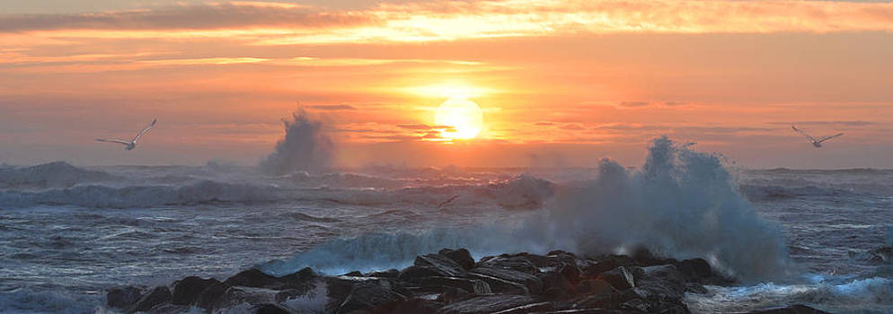 Plum Island Sunrise by John Brown