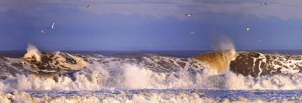 Plum Island Waves by John Brown