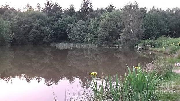 Plump Hill Pond by John Williams