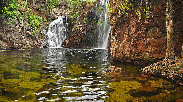 Plunge Pool by Terry Everson