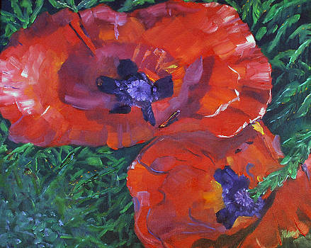 Plural Poppies by Marcy Silverstein