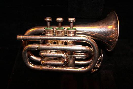 Pocket Trumpet by Al Shields