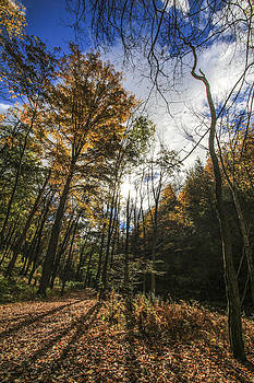 Pocono Mountain Trails by Creative Mind Photography
