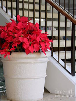 Mary Deal - Poinsettias by the Stairway