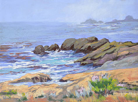 Point Lobos Morning by Patricia Rose Ford